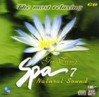 SPA MUSIC ชุด 7 กู่เจิง โดย อ.หลี่หยาง